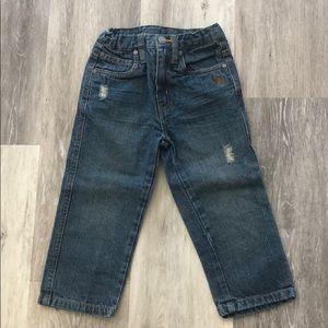 Polo Assn Jeans